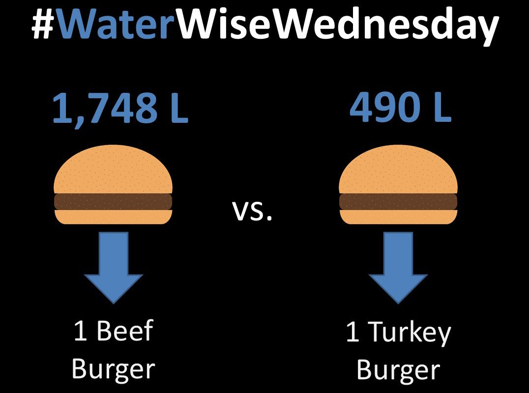 Water Wise Wednesday