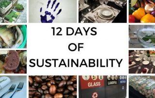 12 days of sustainability