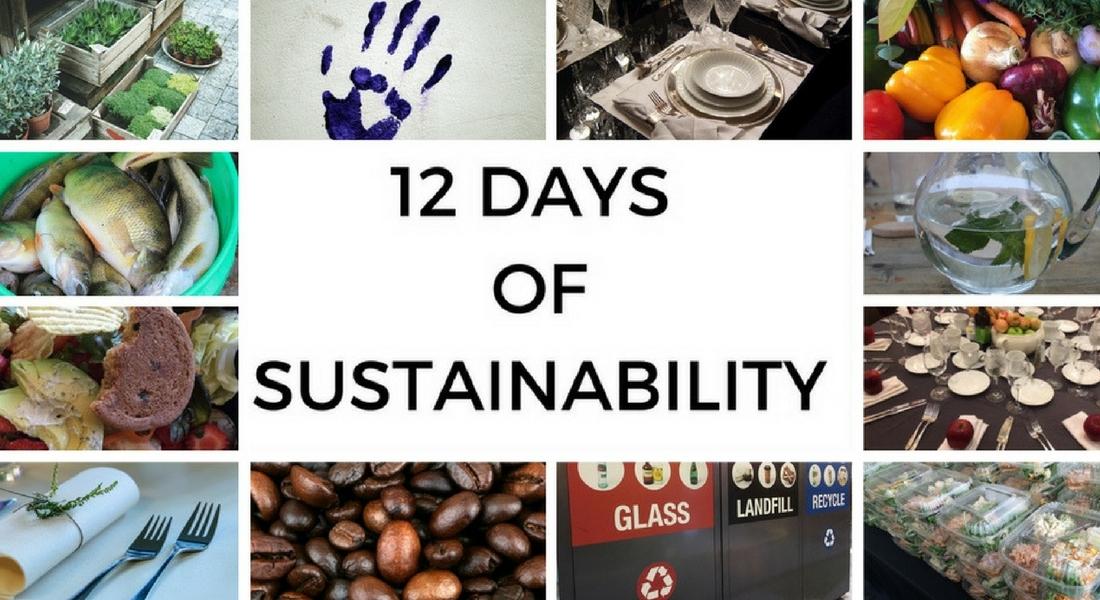 12 days of sustainability