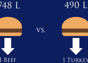Beef vs. Turkey