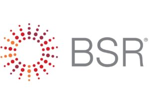 BSR 2017 Sustainability Report