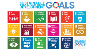 Standards, SDGs, Certifications…Oh My!
