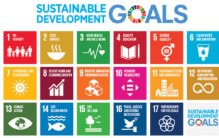 Standards SDGs Certifications…Oh My!