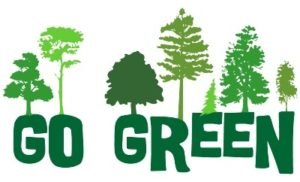 Go Green Without Impacting Your Budget