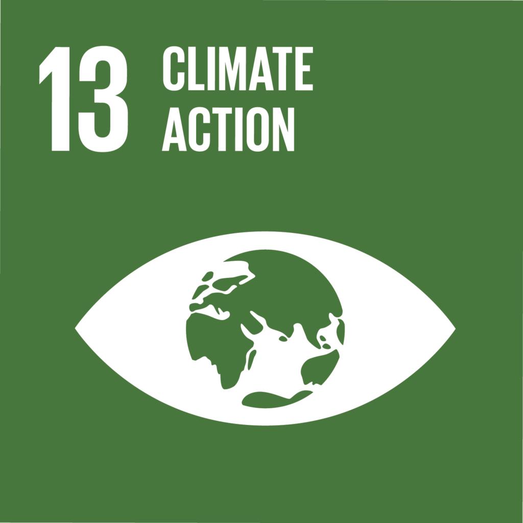 SDG #13 - Climate Action
