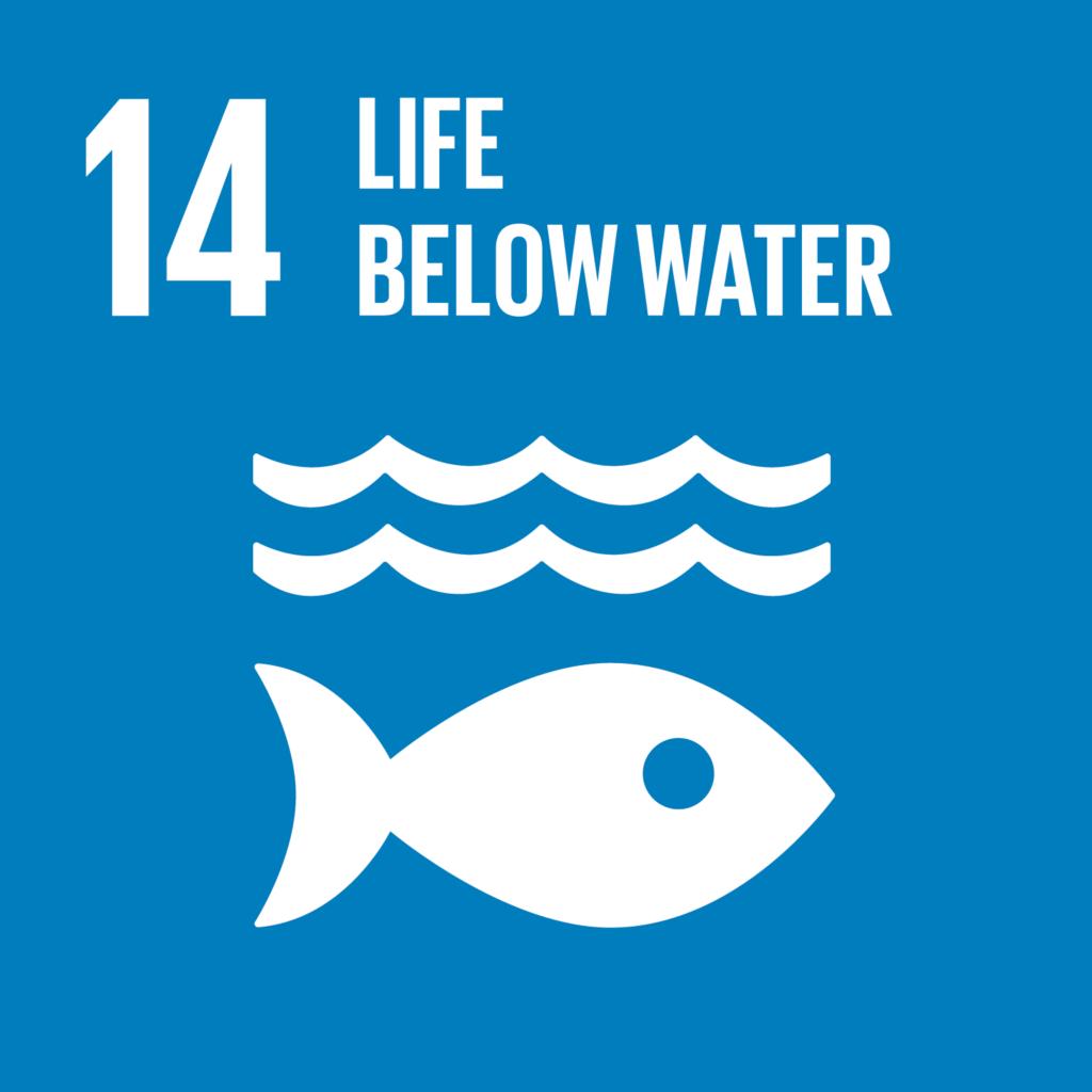 SDG #14 - Life Below Water