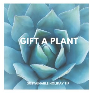 Gift a Plant