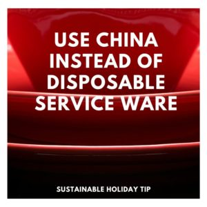 Use China Instead of Disposable Service Ware