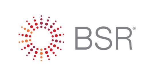 BSR 2019 Case Study