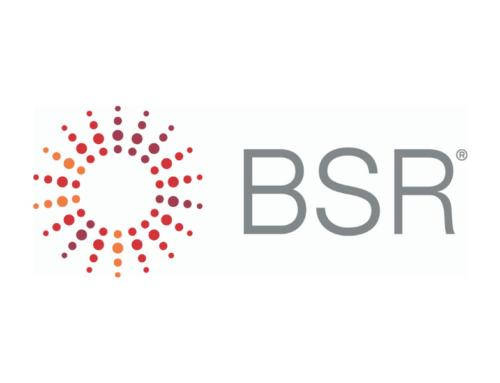 BSR 2020