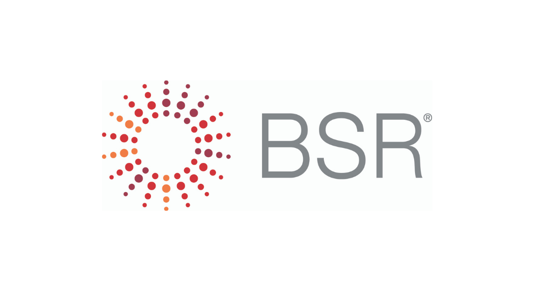BSR 2020 Infographic