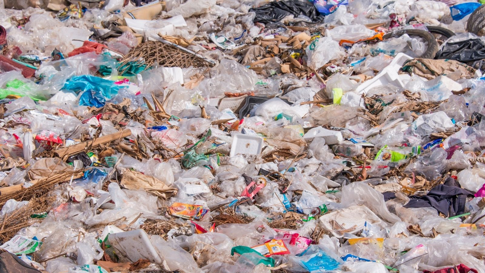 The Role that Companies Play in Sustainability - Waste Calculation