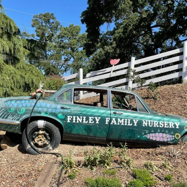 A Vacation with Intentions of Supporting Diverse Businesses - Finley Family Nursery